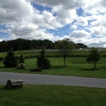 Photo taken at Clover Hill Winery by Mom's Guide T. on 9/20/2012