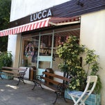 Photo taken at Lucca Heladería Boutique by Tarik T. on 3/11/2013