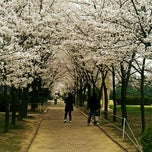 Photo taken at 포항공과대학교 Rist3동 by ryuadell D. on 4/16/2012