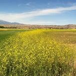 Photo taken at San Jacinto Wildlife Area by Jeff S. on 4/19/2013