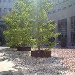 Photo taken at Tribunale di Padova by Tomaso on 7/5/2013