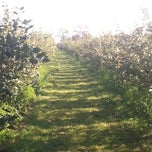 Photo taken at Mack's Apples by Wayne R. on 9/22/2012