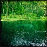 Photo taken at Ichetucknee Springs State Park - North Gate by Summer L. on 6/21/2013