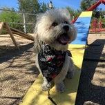 Photo taken at Partners Dog Training School by Melany B. on 3/30/2015