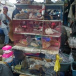 Photo taken at Pasar Burung Jatinegara by 💋✌dean✌💋 on 1/3/2013