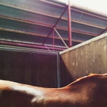 Photo taken at Centennial Park Equestrian Centre by Suzie Y. on 3/8/2014