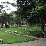 Photo taken at Cemitério da Paz by Alessandra C. on 11/4/2012