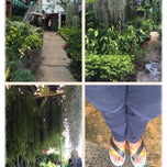 Photo taken at Siam Orchid Center (ศูนย์กล้วยไม้สยาม) by Charinthon K. on 4/11/2015