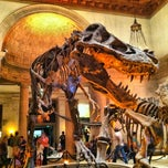 Photo taken at Natural History Museum of Los Angeles County by Travis S. on 4/2/2013