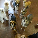 Photo taken at Bark ATL by Creative Loafing Atlanta on 9/19/2013