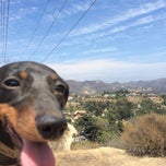Photo taken at Fat Girl Hill at Runyon Canyon by Chad on 8/19/2014