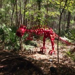 Photo taken at Tallahassee Museum by Jim H. on 4/6/2013