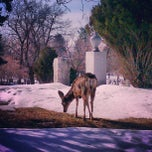 Photo taken at Mount Olivet Cemetery by Mark H. on 3/2/2013
