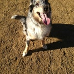Photo taken at Hermon Dog Park by Nicky on 12/20/2012