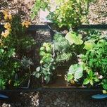 Photo taken at Green 'N Growing by Tina on 3/30/2013