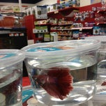 Photo taken at Petco by Harjit on 3/17/2013