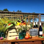 Photo taken at Ram's Gate Winery by Ram's Gate Winery on 9/11/2013