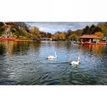 Photo taken at Peasholm Park by Mr FRoslan on 5/11/2013