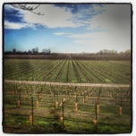 Photo taken at Saralee Vineyards by Tucker T. on 1/9/2014