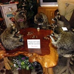 Photo taken at Woodland Creek Furniture & Gallery by The M. on 12/30/2013