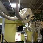 Photo taken at Mid-America Science Museum by Amy R. on 3/22/2013