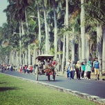 Photo taken at Ijen Car Free Day by Fhy L. on 9/21/2014