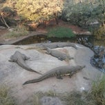 Photo taken at Crocodile Sanctuary by Roger F. on 4/20/2014