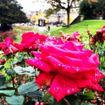 Photo taken at Crescent Gardens by Gregory K. on 10/18/2014