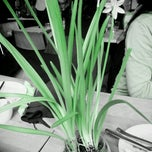 Photo taken at Restaurant Punto by David S. on 2/23/2013