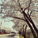 Photo taken at AAFES PX Yongsan by Aaron C. on 4/1/2014