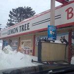 Photo taken at Lemon Tree by Dave S. on 12/24/2013
