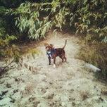 Photo taken at Парк для выгуливания собак by Александр Б. on 10/7/2013