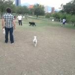 Photo taken at Zona de perros, Parque Rufino Tamayo by Iván L. on 4/1/2013