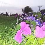 Photo taken at Khalid Shaheed Park by Talha M. on 3/29/2014