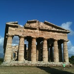 Photo taken at Area Archeologica di Paestum by Jesse v. on 7/20/2011