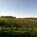 Photo taken at Corcoran Vineyards by Brandice E. on 10/15/2011