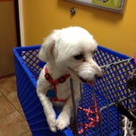 Photo taken at PetSmart by Kat M. on 4/26/2013