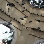 Photo taken at Plaza Del Pilar by Cedrick Z. on 7/16/2014