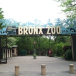 Photo taken at Bronx Zoo by Hunter H. on 5/13/2013