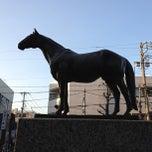 Photo taken at 目黒競馬場跡 by Taichi 罪. on 2/3/2013