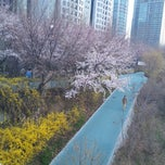 Photo taken at 양재천 산책로 (Yangjaechun Trails) by Young-Won K. on 4/10/2013