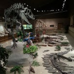 Photo taken at Dakota Dinosaur Museum by Nick G. on 6/5/2013