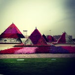 Photo taken at Dubai Miracle Garden by Alwathiq A. on 4/7/2013