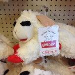Photo taken at Pet Supermarket by Karl K. on 4/5/2014