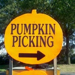 Photo taken at F&W Schmitts Farm by Nicole H. on 10/16/2011