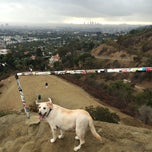 Photo taken at Fat Girl Hill at Runyon Canyon by reigny on 11/30/2014