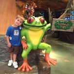 Photo taken at Rainforest Cafe by Jamie M. on 7/16/2013