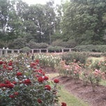 Photo taken at Raleigh Rose Garden by David on 5/16/2013
