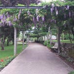Photo taken at Parque de Arouca by 2010nw on 6/25/2014