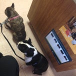 Photo taken at Heritage Animal Hospital by Kelly K. on 2/28/2015